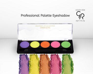 Professional palette izdvojena